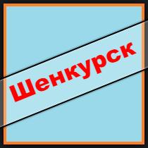 шенкурск